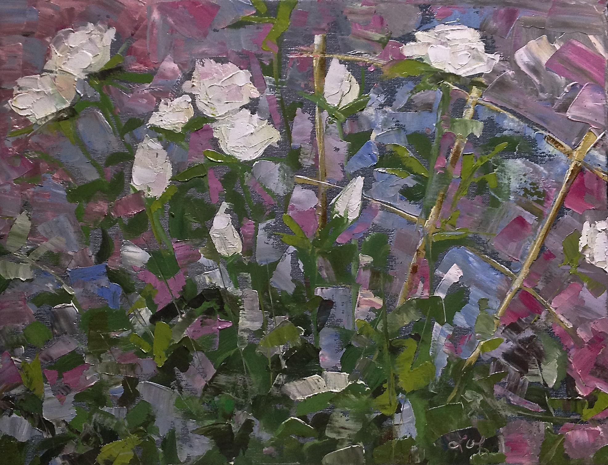Roses of White