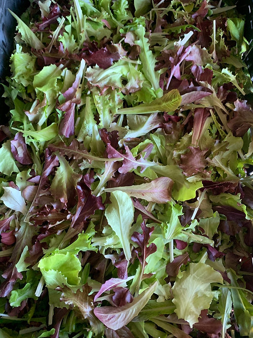 Strictly Lettuce - Salad Mix