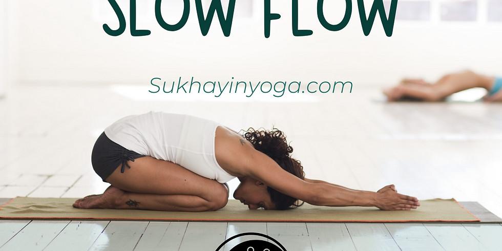 Slow Flow: Beginner Level yoga