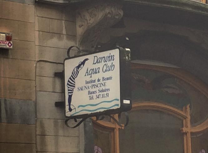 Enseigne de Darwin Aqua Club