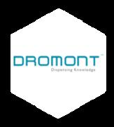 dromont nid abeille.png