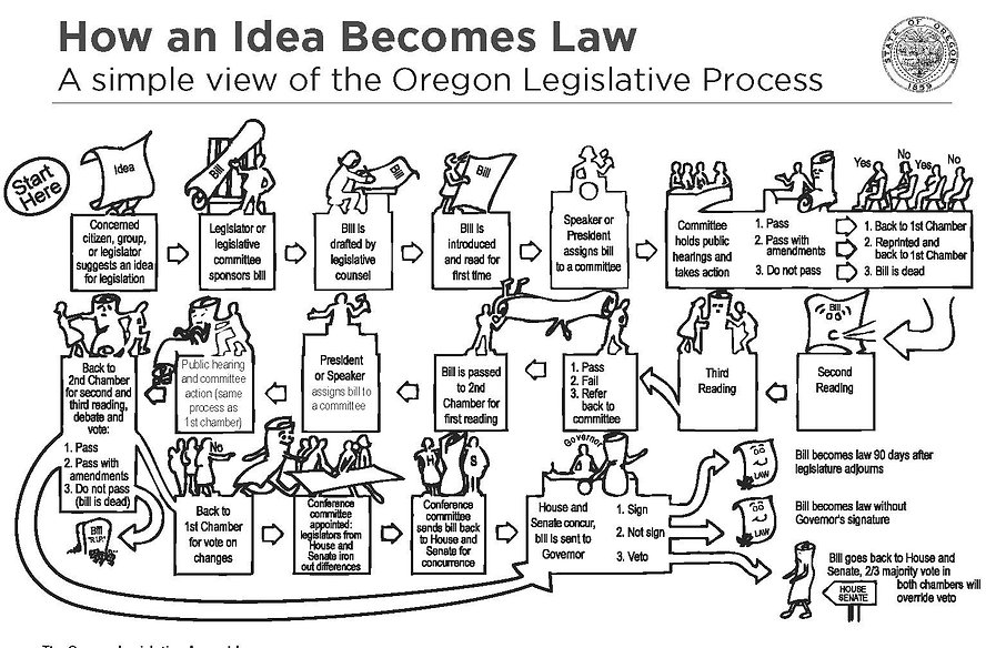 This image shows the process of how an idea becomes a law in Oregon. It is a very long process! We are just at the beginning.