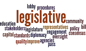 This is a wordcloud about the Legislative Committee.