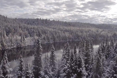 FOREST-RIVER-COTE-NORD-WINTER
