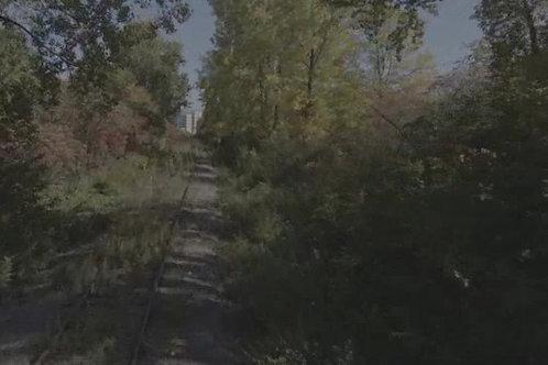 Chemin-de-fer-sous-les-arbres