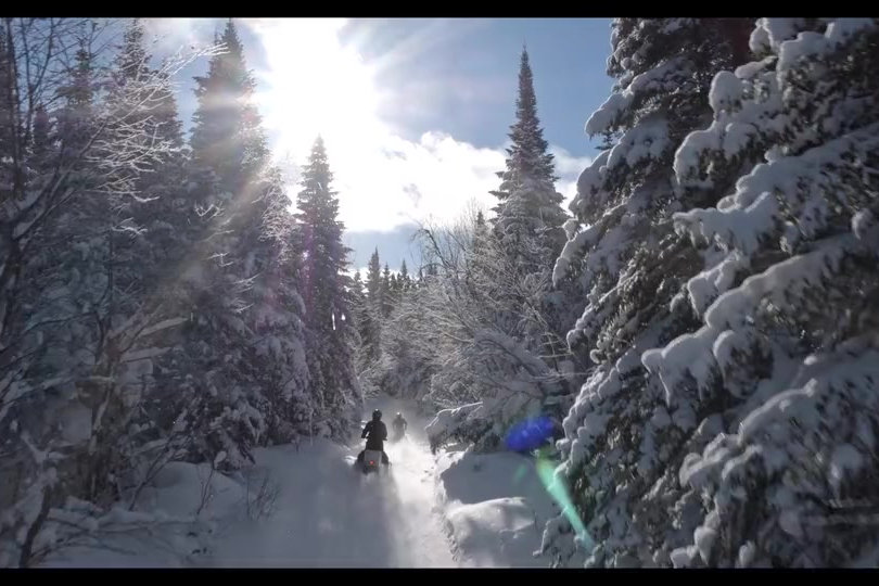 SKIDOO-christal-forest-1