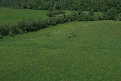 FATBICK-GREEN-GRASS