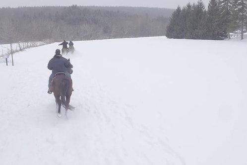 HORSE-RIDING-SNOW