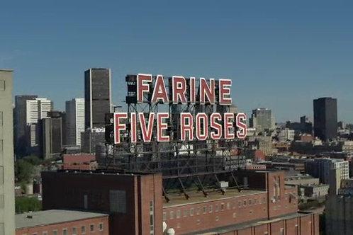 Centre ville du farine five roses