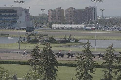 Horse-Cavalerie