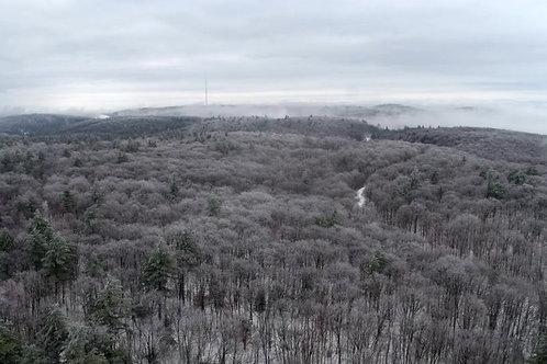 canopé-hiver