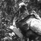 photo-aerienne-pigeon-equipe-d-un-appare