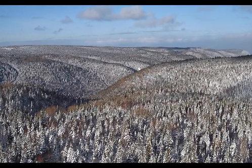canopé-hiver-2