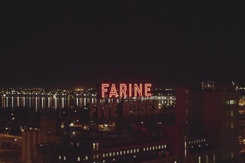 Farine-Five-Rose-Night