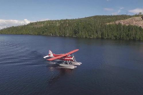 Beaver-Airplane