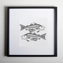 Scottish Haddock