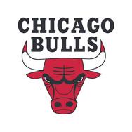 web logos_0008_Chicago Bulls logo.jpg