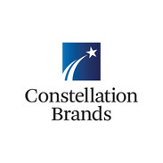 web logos_0002_constellation-1024x682.jp