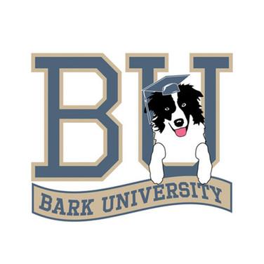 in kind web logos_0067_Bark University.j