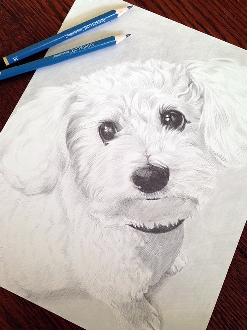 Custom Pencil or Watercolor Pet Portrait