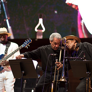 34th Annual Chicago Blues Fest