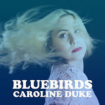 Bluebirds_CDcover.JPG