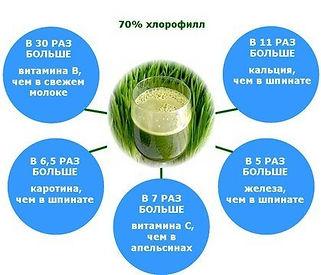 хлорофилл в соке Витграсс