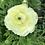 Thumbnail: Seasonal Mixed Bouquet