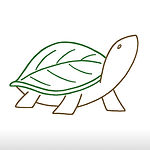 turtleback hollow logo.jpg