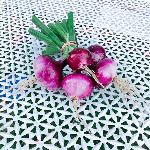Desert Sunrise Onions