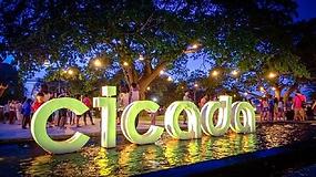 Cicada Market1-400P.png