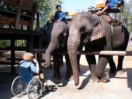 Disabled_holiday_Thailand-112.jpg