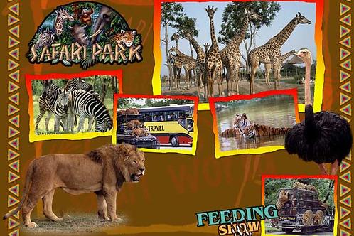OD07 Safari World & Marine Park Bangkok
