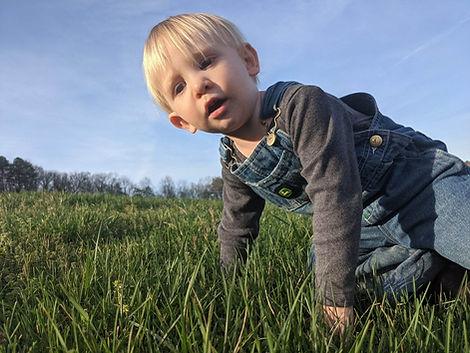 Obie in grass.JPG