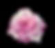 小图标-模板_05.png