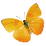 gold-butterfly.png