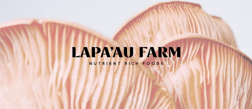 Lapa'au-Farm-banner.jpg