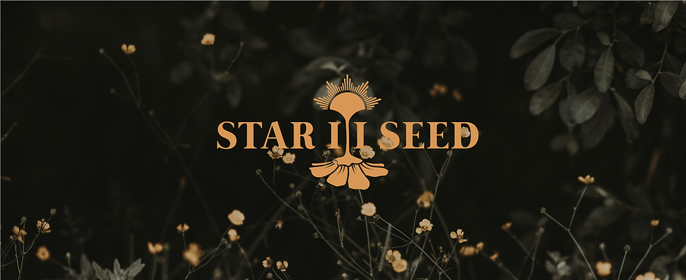 Star-II-Seed-banner.png