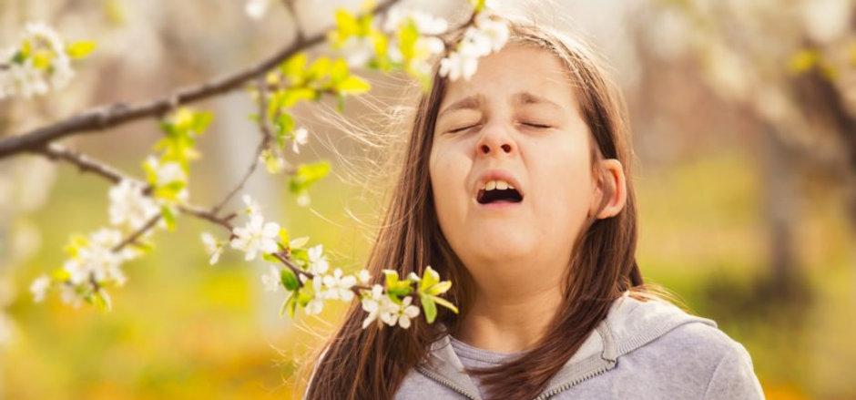 spring-allergies-chiropractic-care.jpg