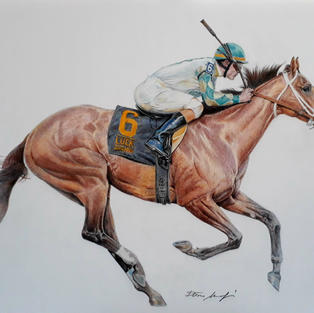 THE HORSE MUCHO MACHO MAN