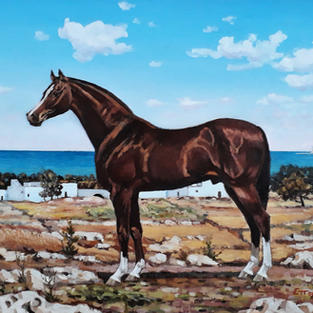 SALENTO LANDSCAPE WITH HORSE (GALLIPOLI)