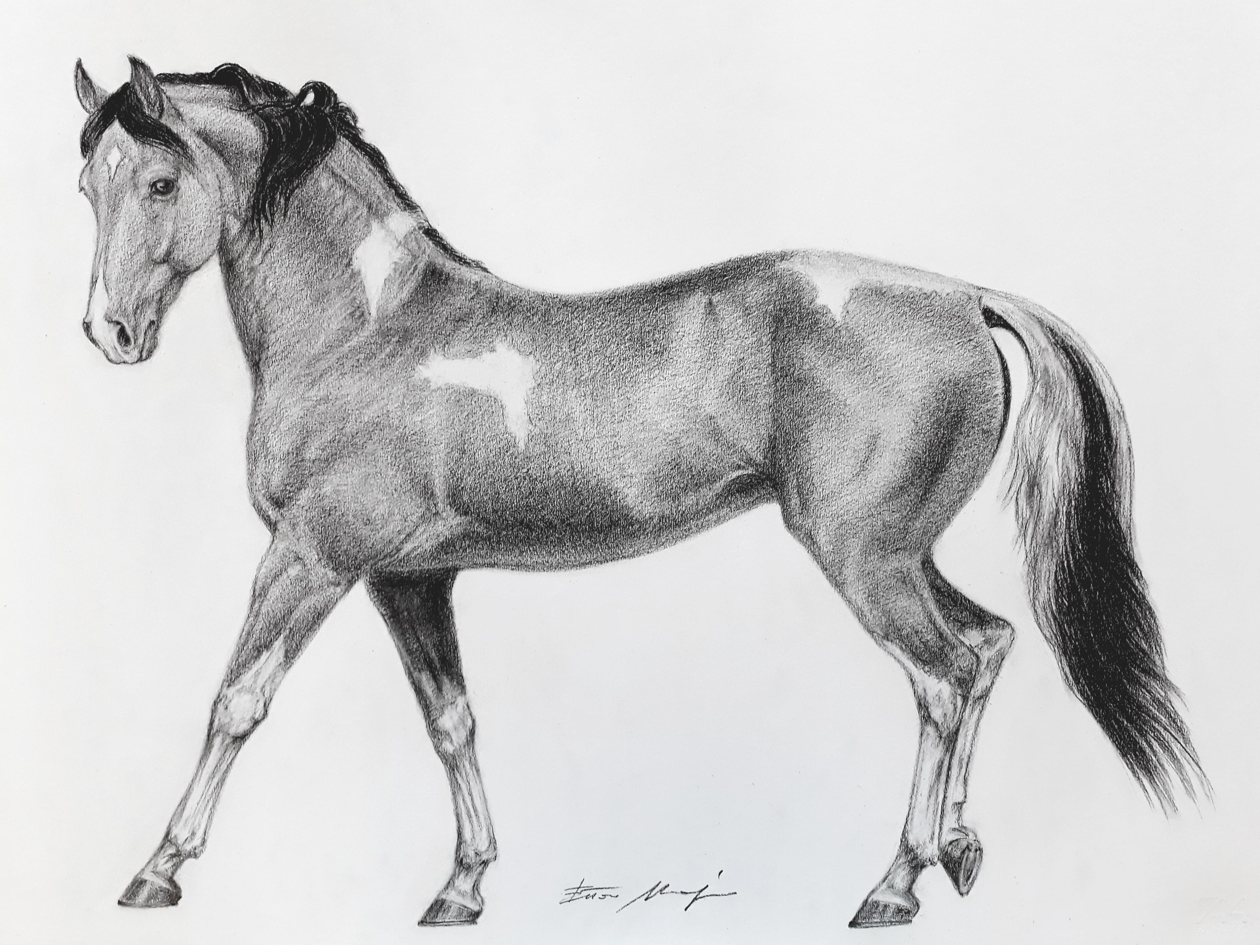THE HORSE PIPPI