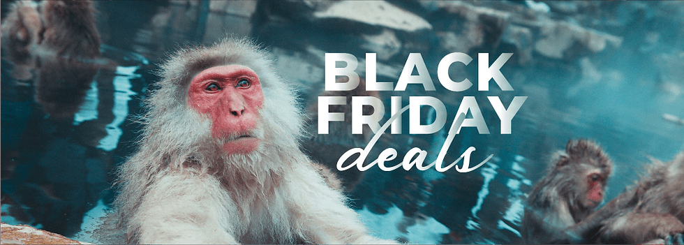 Monkey Black Friday Banner 3.png