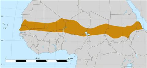 AcrossAfricaTradeRegion.png