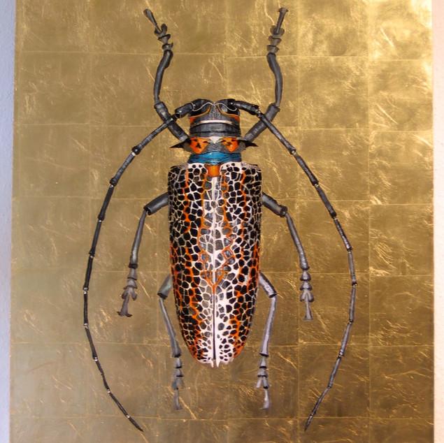 Leoparden Käfer