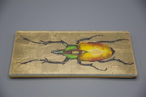 Cleopatra Käfer