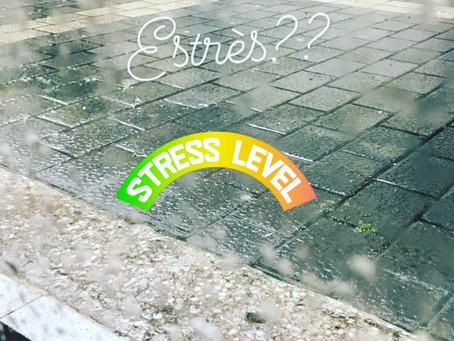 Efectes de l'estrès