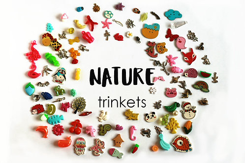 Nature Theme I Spy trinkets, 1-3cm, Set of 100
