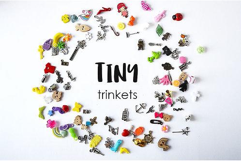 Tiny I Spy trinkets for I spy Bag/Bottle TomToy