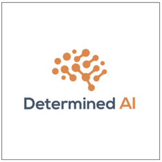Determined AI